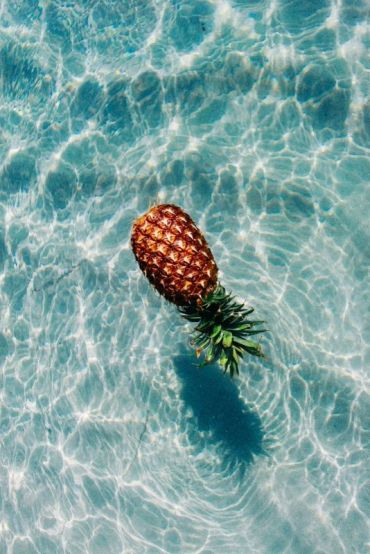 GLOBAZINE-TOUCH-PINTEREST-ANANAS (1)